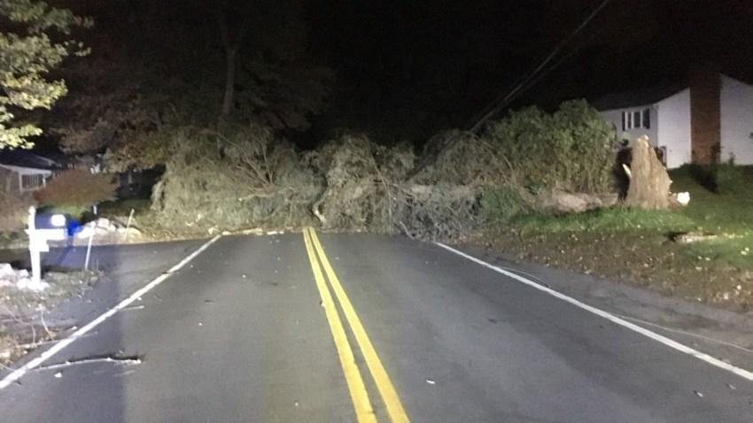 101618 methuen tree down