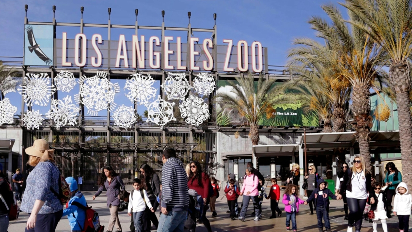 LA Zoo Fake Facts