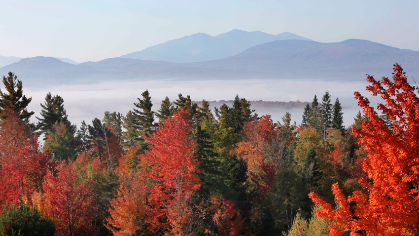 Travel Trip Fall Foliage Guide