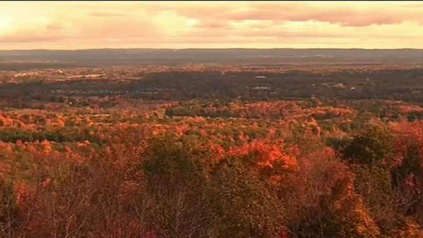 DEEP_Releases_Predictions_for_Fall_Foliage_in_Conn..jpg