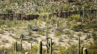 The border fence is surrounded by cacti at Organ Pipe Cactus National Monument near Lukeville, Arizona