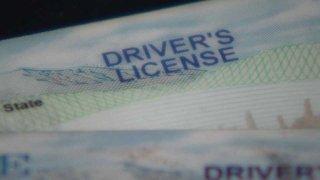 Maine Driver's License Generic