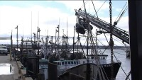 As Maine's Fishing Industry Flounders Amid Coronavirus, Lawmakers Look for Help