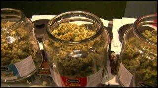 Marijuana Jar Marijuana Dispensary Cannabis Shack Biddeford Maine