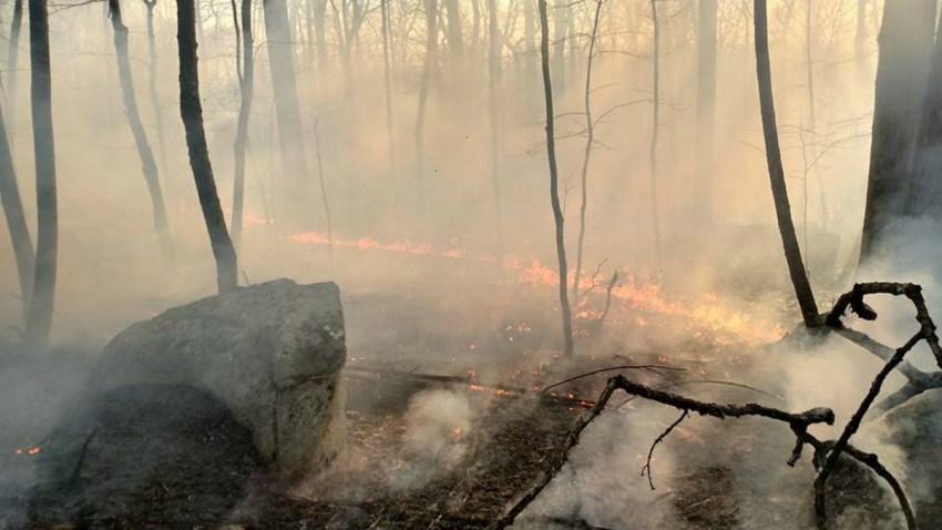 PORTLAND FIRE web