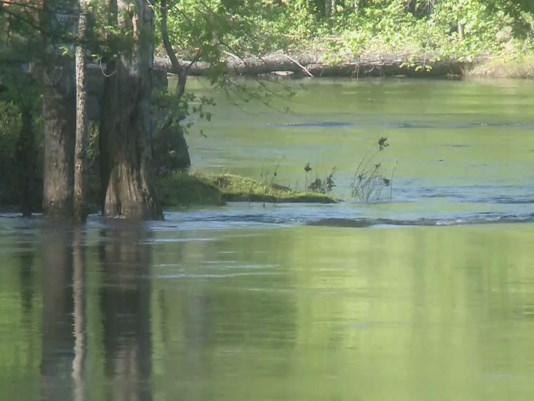 Saco River Recovery