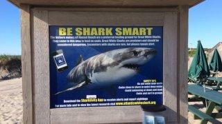 Shark warnings at Nauset beach