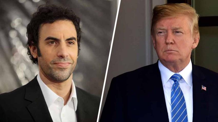Trump Cohen
