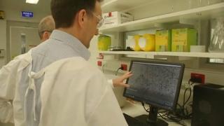 maine health officials study coronavirus
