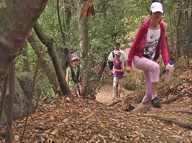 state_park_hiking_trail