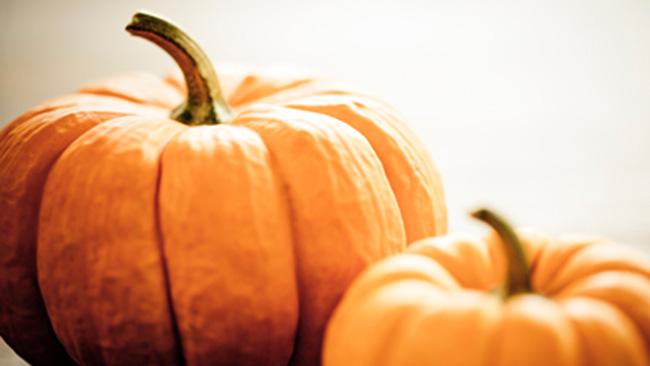 tlmd_pumpkin_facial_111612_ew_380