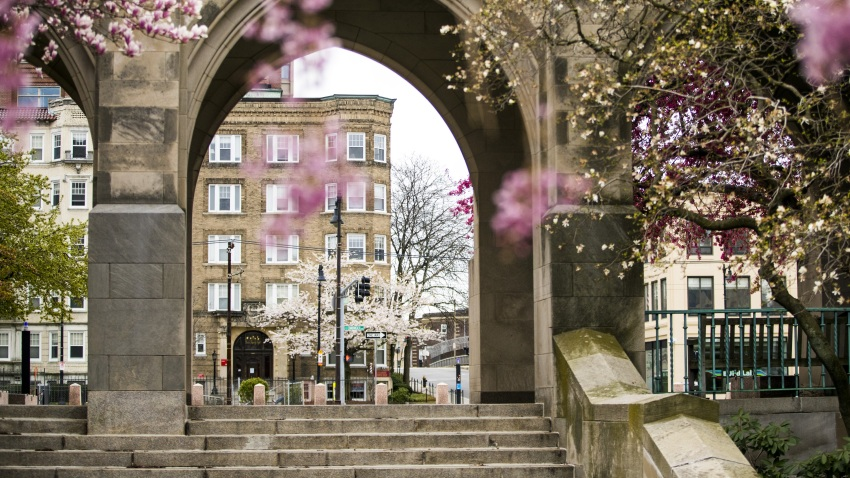 Boston University's campus