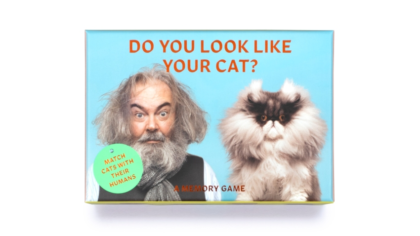 """This image shows """"Do You Look Like Your Cat?"""" a card memory game"""