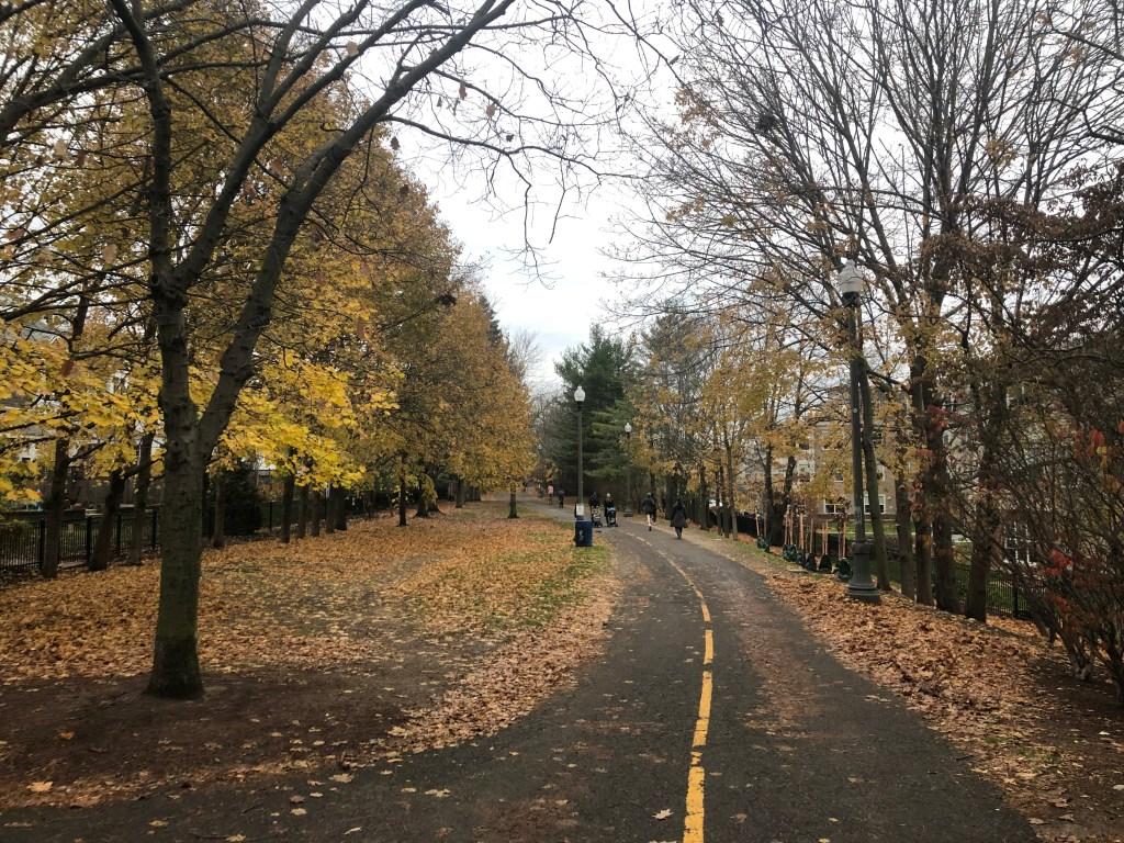 Alewife Linear Park