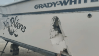 Whale Punches Hole in Fishing Boat Off Rhode Island