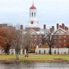 Proposed Ban on Harvard Social Groups Draws Faculty Pushback