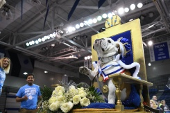 Drake U. Crowns 'Most Beautiful Bulldog'