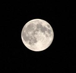 Super Moon Photo Gallery