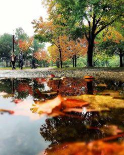 Leaf Peeping: Top Instagram Photos of the Week