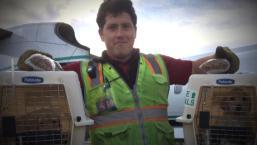 Stolen Plane Raises Questions About Airport Worker Security