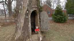 Winnie the Pooh House in Westford