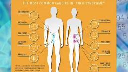 Diagnosing Lynch Syndrome