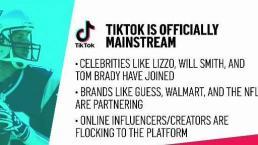 Explaining Popular Social Media App TikTok