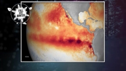 El Nino's Impact on New England Winter