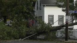 Storm Knocks Down Trees, Power Lines Along New England Coast