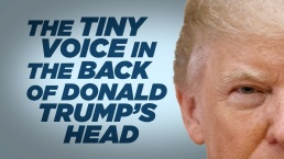 'Late Night': The Tiny Voice in the Back of Trump's Head