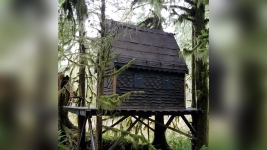 Child Porn Found in Fairytale Treehouse at Washington Forest