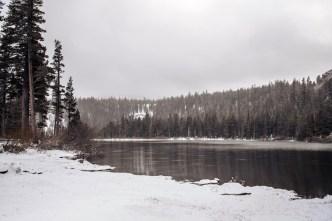 """Bachelor Winter Games"" Ski Resort Attracts Potential Buyer"