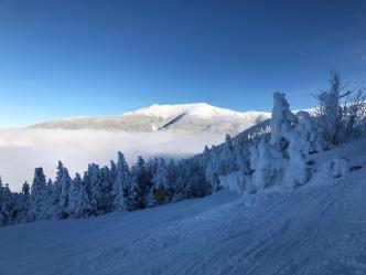 Mass. Man Killed in Cannon Mountain Ski Collision Identified