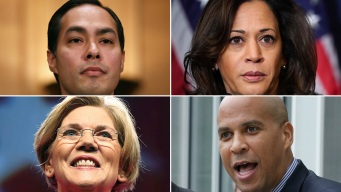 A Look at the 2020 Democratic Presidential Roster