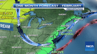 February Forecast: Will Cold Offset Warm Weather?
