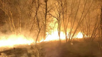 Wildfires Burn More Than 100 Acres in Maine