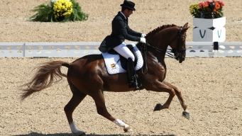 Spanish Horse Dances to Santana's 'Smooth' at Rio