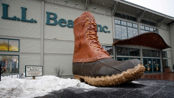 L.L. Bean Raises Age to 21 to Buy Rifles