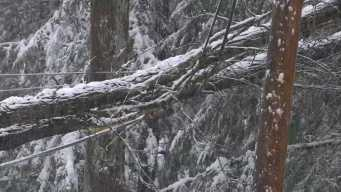 Thousands Still Without Power in 3 States After Snowstorm