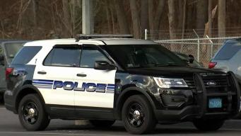 Selectman Cites Public Safety in Police Cruiser Criticism