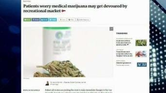 Could Medical Marijuana Get Devoured by Recreational Market?