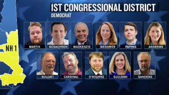Crowded Field of Democrats in NH's First Congressional Race