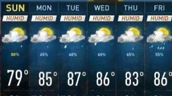 Get Your Umbrellas Ready