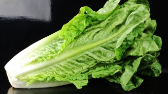 Throw It Away: CDC Expands Warning on Romaine Lettuce