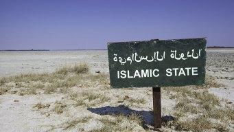"ISIS Recruits ""Jihadi Brides"""