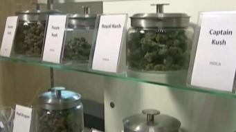 Mass. Town to Vote on Banning Marijuana Sales