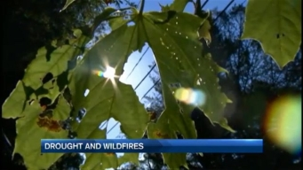Crippling Drought is Deeply Concerning to Area Firefighters