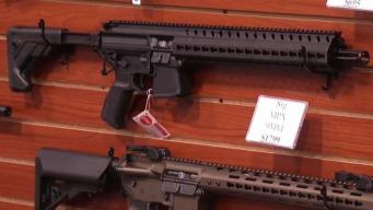 Gun Task Force Calls for Magazine Limits, Age Increases