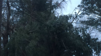 Officials: About 250,000 Customers Remain Without Power
