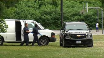 Police Investigating After Body Found in Wooded Area in Brighton
